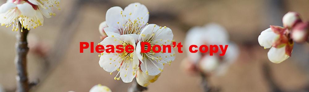 Please don't copy